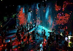 TeamLab borderless art installation