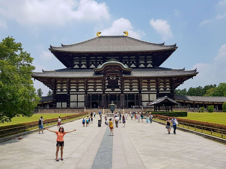 Nara is impressive and worth a day trip!